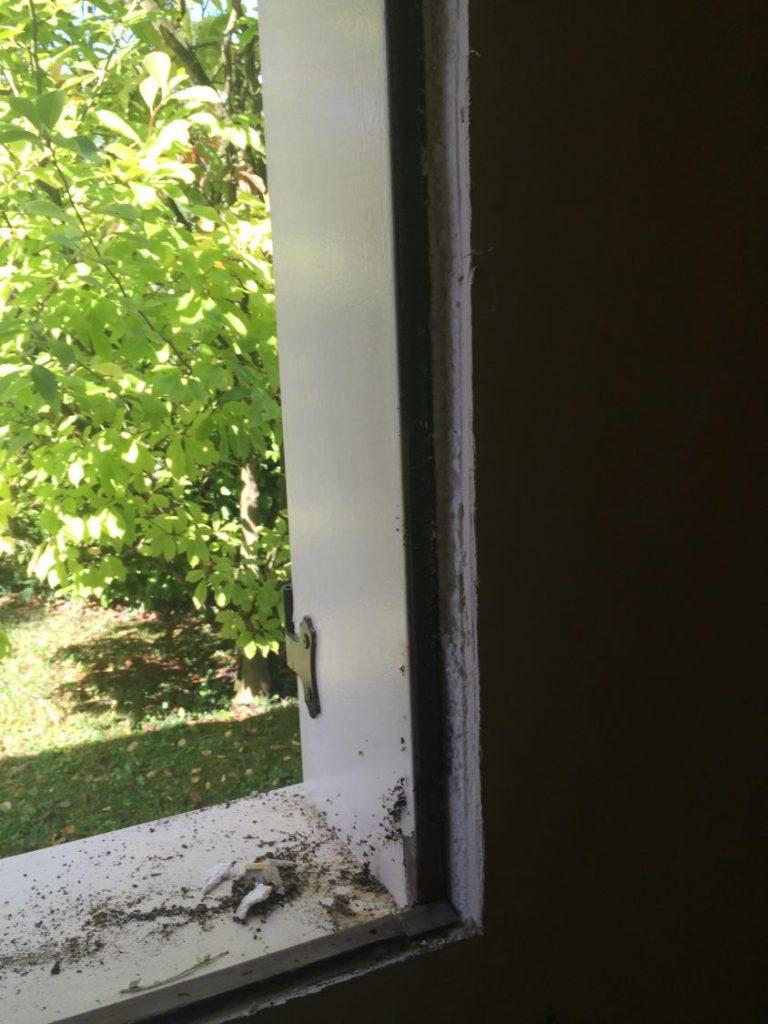 fenetre pvc pose en neuf maison type phoenix chelles